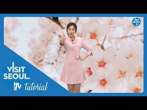 Visit Seoul TV 튜토리얼(tutorial)