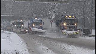 4K| Scania And Mercedes-Benz Arocs Plow Trucks