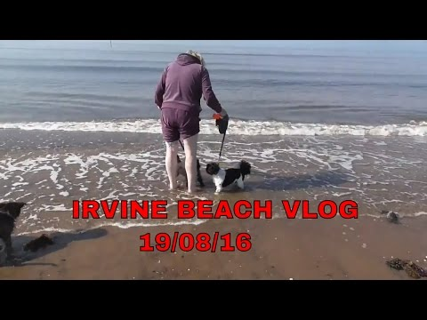 VLOG AT IRVINE BEACH SCOTLAND WITH MY WIFE AND DOGS AND FRIEND ALAN 19/08/16