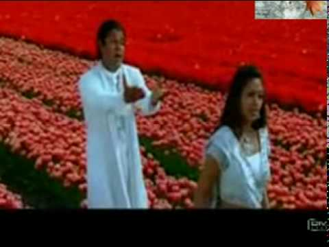 nenjinullilremix_mpeg1video.mpg
