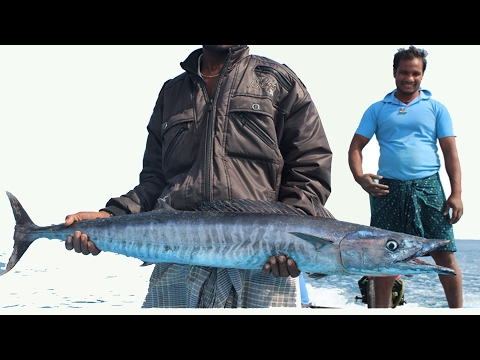 DEEP SEA FISHING IN INDIA | BOAT BIG FISH