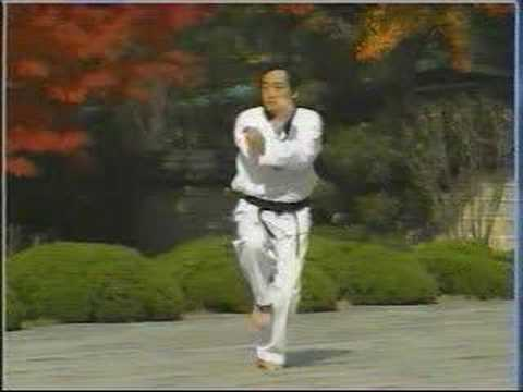 taekwondo poomse 10