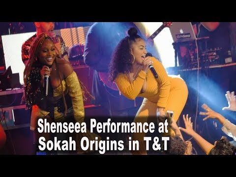 Shenseea's Performance at Nailah Blackman's Sokah Origins Concert