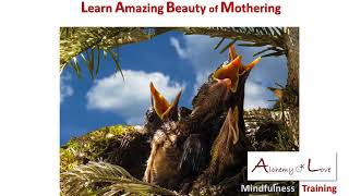 Mothering as Spiritual Quality
