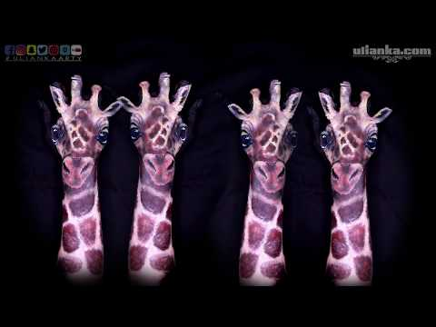 Animal Hand Painting Giraffe Intro