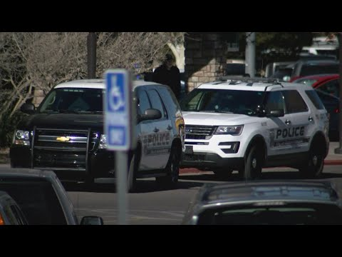 Police respond to hundreds of calls at Albuquerque shopping malls