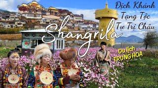 Đi xem sắc cảnh & dân tộc Tạng ở tỉnh Vân Nam - Trung Quốc