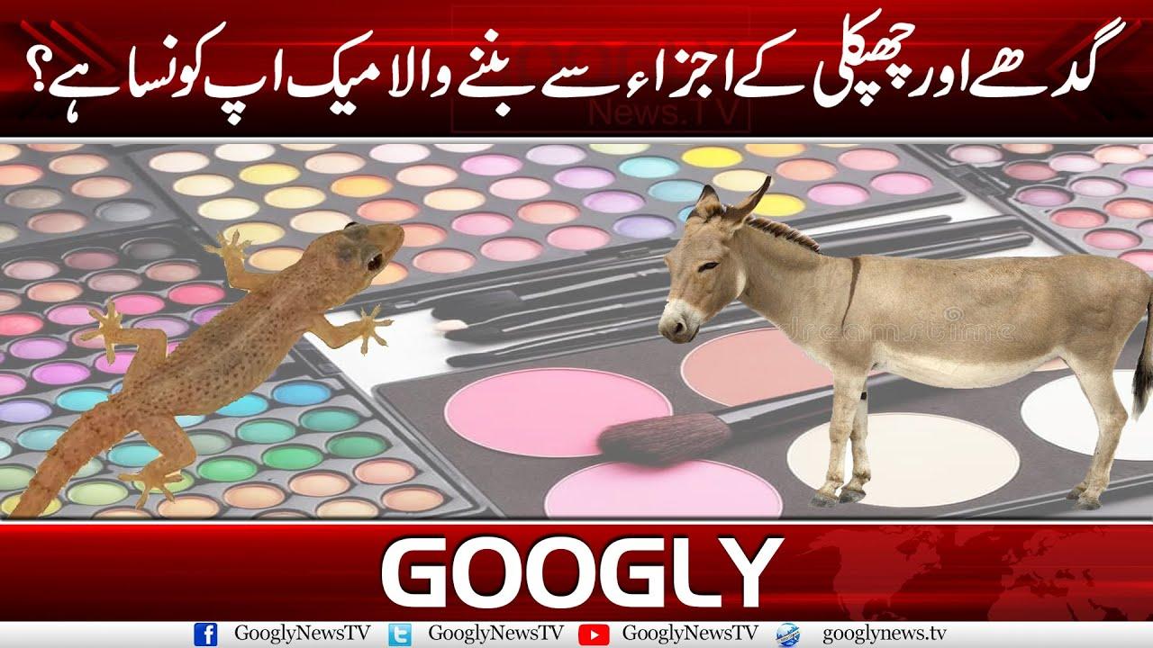 Gadhey Aur Chipkali Kai Ajza Sai Bana Make Up Kon Sa Hai? | Googly News TV