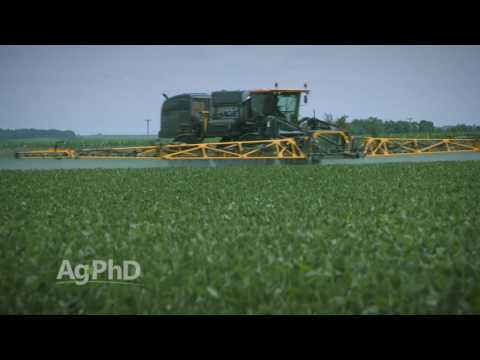 Roundup Ready 2 Xtend Soybeans #966 (Air Date 10-9-16)
