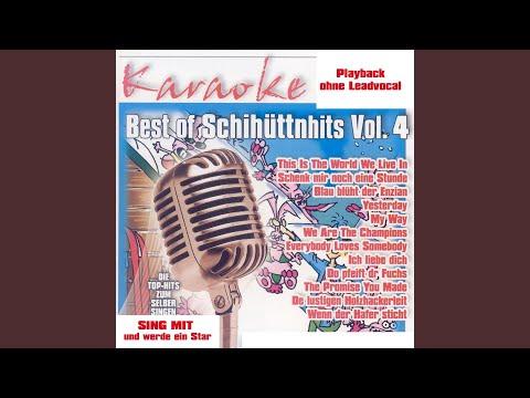 Do pfeift dr Fuchs (InstrumentalVersion)