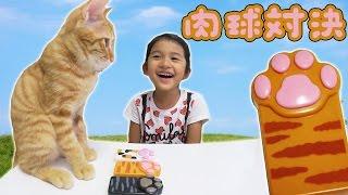 ●普段遊び●ルイ(猫)とぷにぷに肉球対決!!まーちゃん【5歳】おーちゃん【2歳】Rui (cat) Punipuni Pad Showdown! ! thumbnail