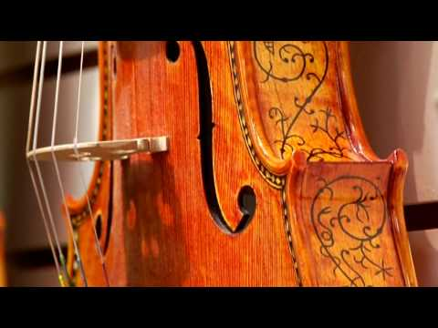 Violins & Orchestra Instruments : What Instruments Are in a Chamber Orchestra?
