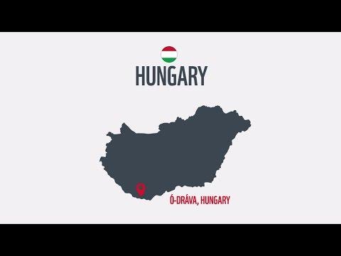The Living Danube: Wetlands restoration Old Drava I WWF-Hungary