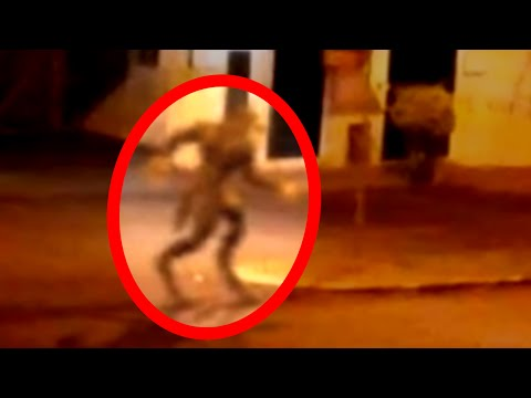 20 Mysterious Creatures Caught on Tape