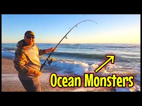 Surf Fishing BIG FISH & OCEAN MONSTERS OBX Cape Hatteras NC