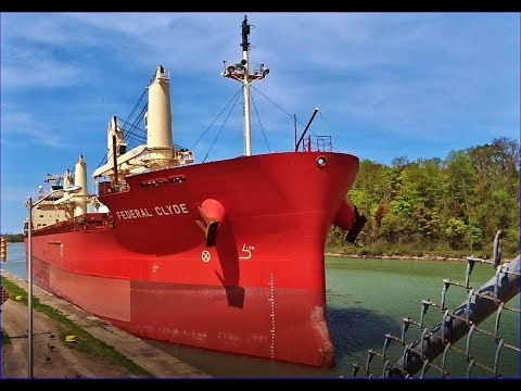 Ship FEDERAL CLYDE on Welland Canal