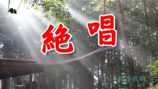 歌手:舟木一夫 作詞:西条八十 作曲:市川昭介.