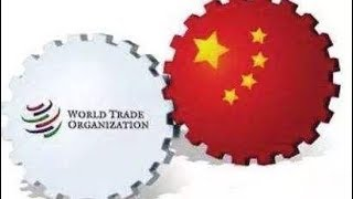 China's role in the WTO over the past 17 years