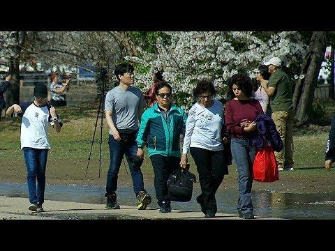 A unique tourist program in Washington, D C  partners with WeChat