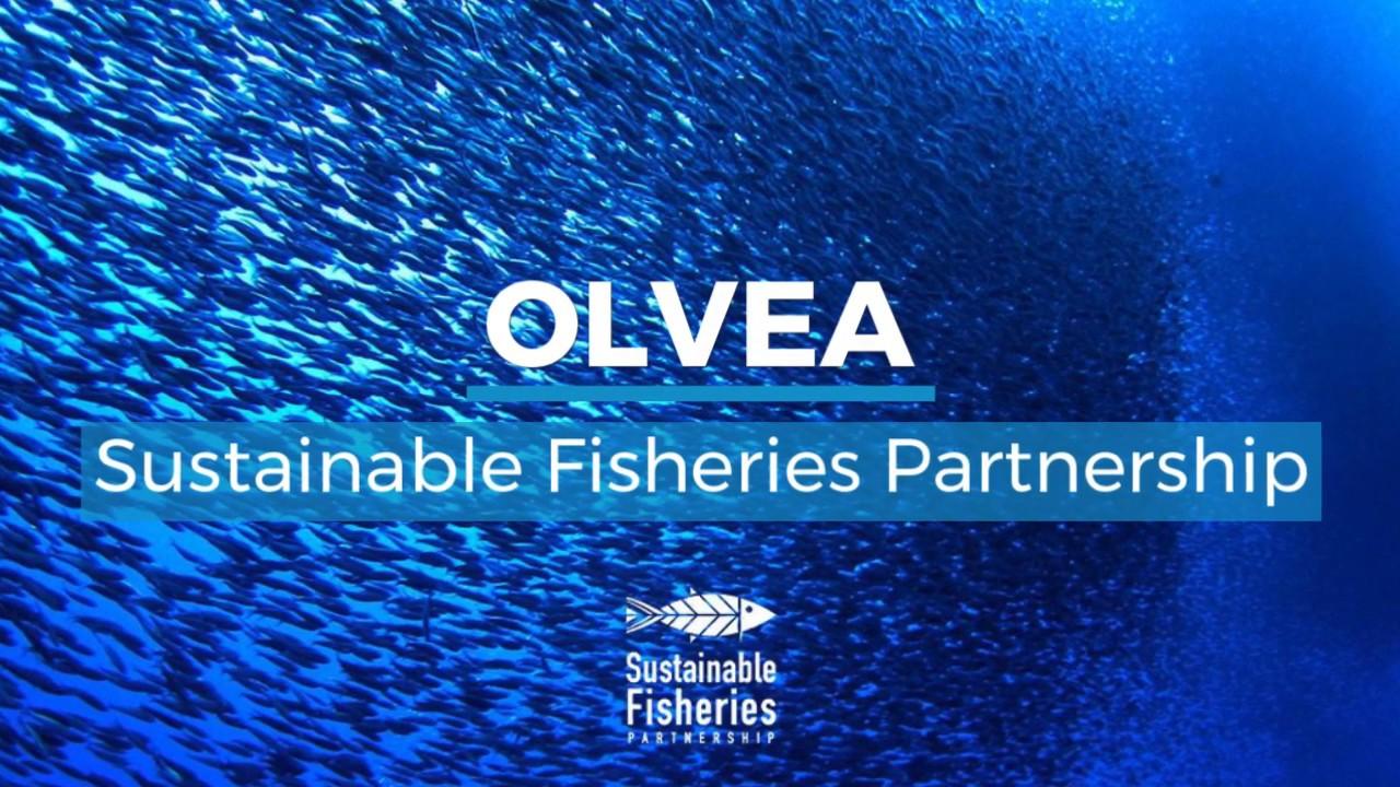 Sustainable Fisheries Partnership - Champion Target 75 1