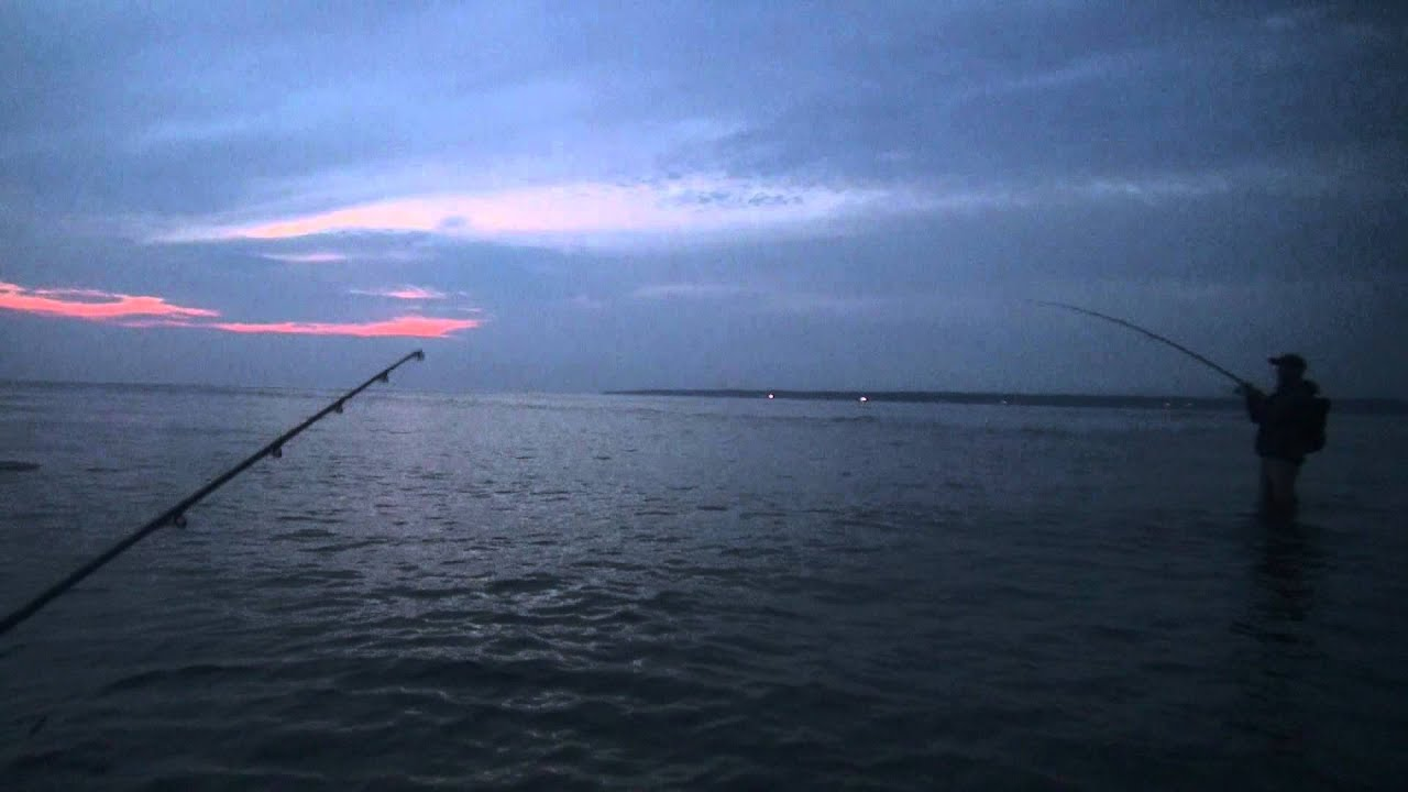 Striped bass fishing at night full moon top water crane for Striper fishing at night