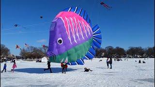 2020 Color the Wind Kite Festival