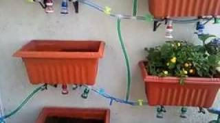 Vertical Garden In Balcony - Distribution Of Water Part 1