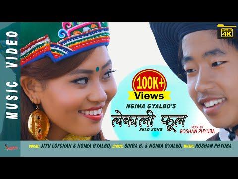 New Selo Song LEKALI PHOOL by Jitu Lopchan & Ngima Gyalbo Tamang ft. Susma Moktan 4K VIDEO