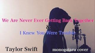 ご視聴ありがとうございます。 今回はTaylor Swiftの「Wee Are Never Ev...
