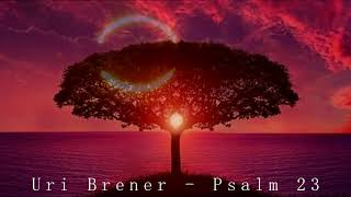 Uri Brener - PSALM 23 live in Slovakia (Angelika Pavlech)