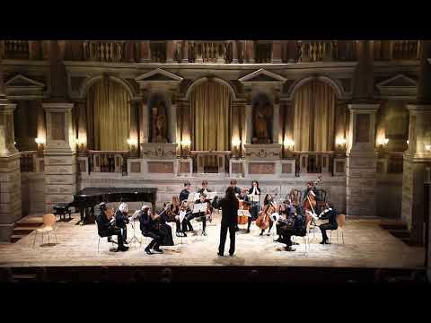 W.A. Mozart: Horn Concerto No. 2 in E-Flat Major, K. 417 Dariusz Mikulski & Solisti di Milano