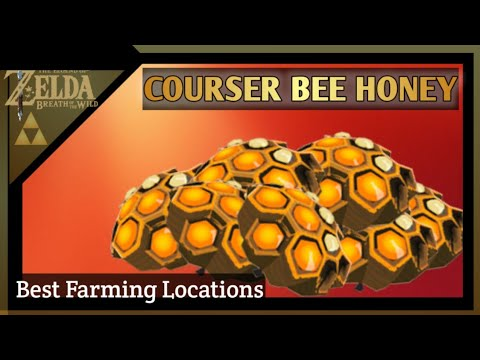 Best Courser Bee Honey Locations-Zelda Breath Of The Wild