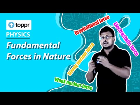 Class 11 Physics: Fundamental forces in nature | Physical world (CBSE/NCERT)
