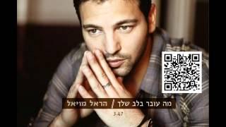 הראל מויאל מה עובר בלב שלך Harel Moyal