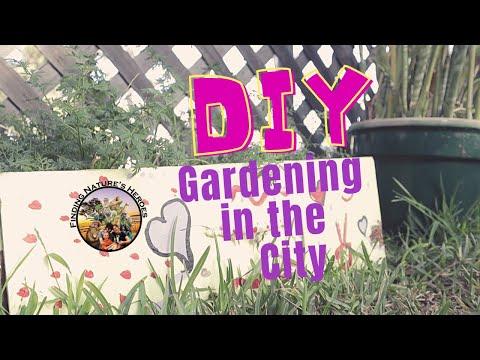 DIY Gardening in the City