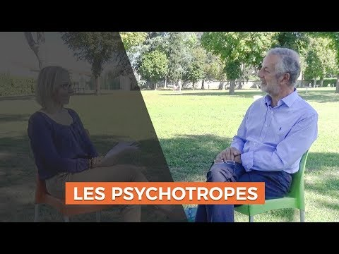 Psychotropes, quelles efficacités ?