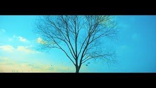 BTS & Boyce Avenue ft. Fifth Harmony - Spring mirror MV