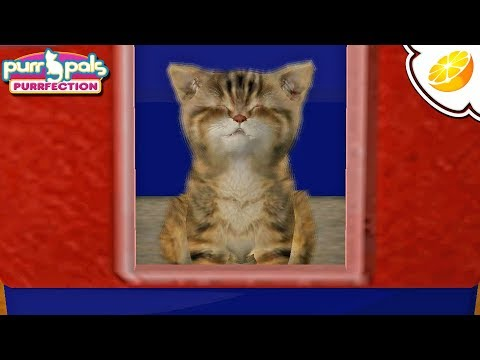 Citra Emulator Canary 719 - Purr Pals: Purrfection (GPU Shaders, Great Speeds!) 1080p - Nintendo 3DS - 동영상