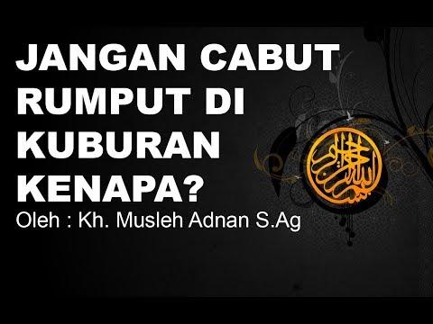Jangan cabut rumput di kuburan, Kenapa? | Kh. Musleh Adnan S.Ag Mp3
