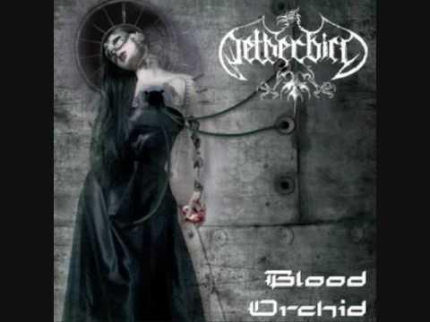Netherbird - Love Under Will