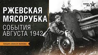 Лекция Алексея Волкова