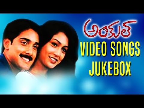 Uncle Movie Video Songs Jukebox  ||  Tarun, Pallavi & A.V.S || MovieTimecinema
