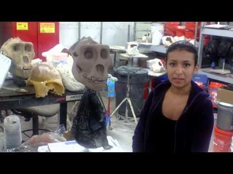 Daniella Cabezas: University of Tampa Artist