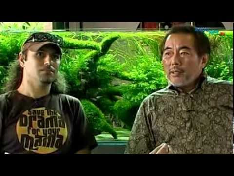 Takashi Amano - Der Meister der Naturaquarien