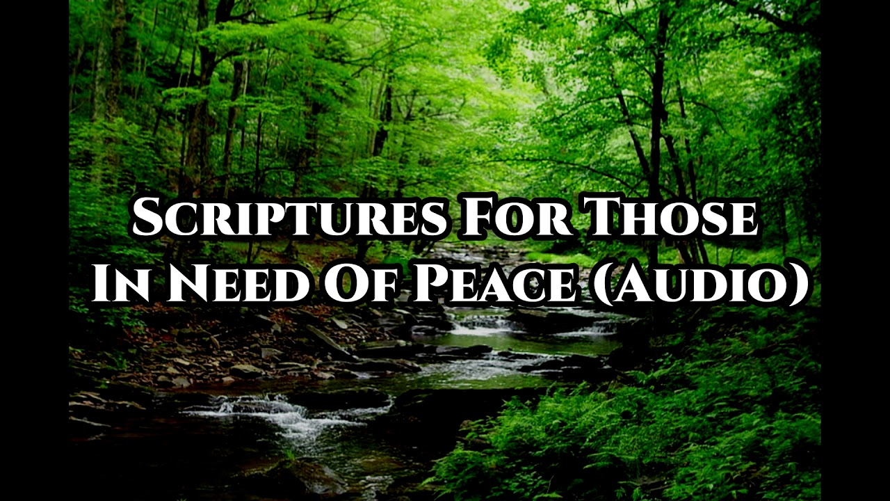 Bible Verses For Those Who Need Peace (Audio Bible Meditation)