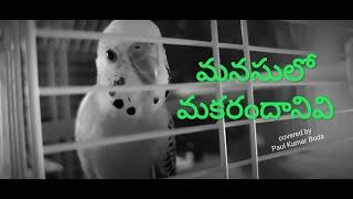 మనసులో మకరందానివి | Manasulo makarandhanivi | Cover song by Paul Kumar Boda