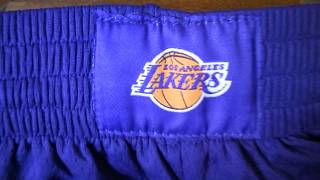 Баскетбольные шорты Nike NBA Los Angeles Lakers  фиолетовые магазин Basket Family