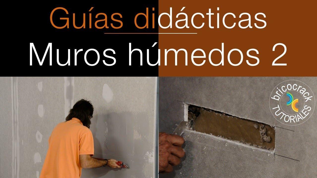 Aislar un muro h medo con placas de yeso laminado 2 - Placas de yeso laminado ...