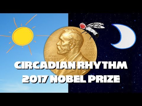 2017 Nobel Prize for Circadian Rhythm