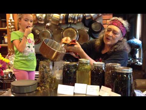 linden-infusion-with-susun-weed